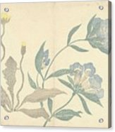 Dandelions And Blue Flowers, Nakamura Hochu, 1826 Acrylic Print