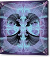 Dandilion Puffs Acrylic Print