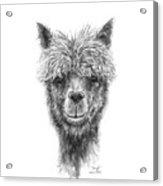 Daniel Acrylic Print