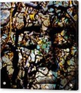 Daphne Consent Acrylic Print