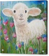 Flying Lamb Productions     Daphne Star In The Tall Grass Acrylic Print