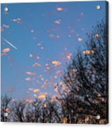 Dappled Sunset-1565 Acrylic Print