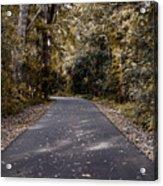 Dark Autumn Acrylic Print