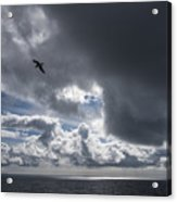 Dark Cloud Acrylic Print