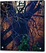 Dark Crossings Acrylic Print