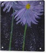 Dark Floral  Acrylic Print