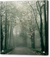 Dark Gloomy Alley In Woods Acrylic Print