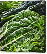 Dark Green Leafy Vegetables Acrylic Print by Elena Elisseeva