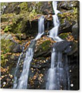 Dark Hollow Falls Shenandoah National Park Acrylic Print