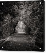 Dark Path In Black And White Acrylic Print
