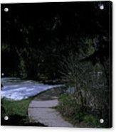 Dark Path Acrylic Print