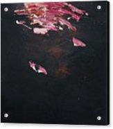 Dark Serie, IIi Acrylic Print by Daniel Hannih