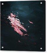 Dark Serie, Iv Acrylic Print by Daniel Hannih