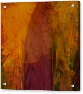 Dark Shadow Acrylic Print