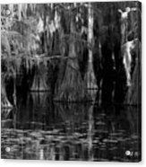 Dark Water Acrylic Print