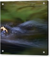 Dark Waters Acrylic Print