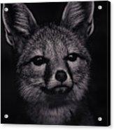 Dash  Acrylic Print