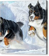 Dashing Through The Snow Acrylic Print
