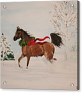 Dashing Thru The Snow Acrylic Print