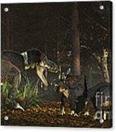 Daspletosaurus Confronts A Family Acrylic Print