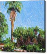 David Rd Palm Acrylic Print