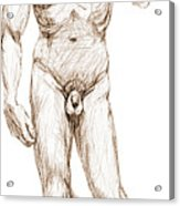 David Sketch Acrylic Print