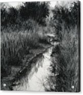 Dawn Marsh Acrylic Print