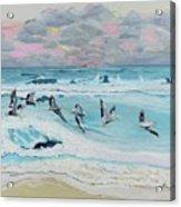 Dawn Pelicans Acrylic Print