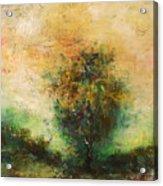 Dawns Dew 1  Acrylic Print