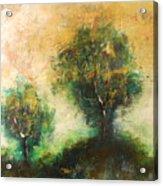 Dawns Dew 2  Acrylic Print