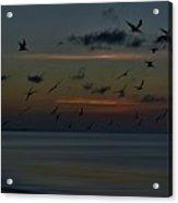 Dawns Light Acrylic Print
