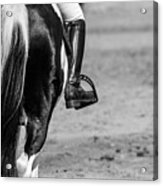 Day At The Dressage Acrylic Print