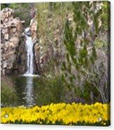 Day At The Falls Acrylic Print
