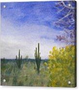 Day In Arizona Desert Acrylic Print
