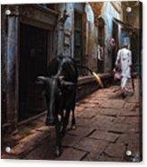 Day In Varanasi Acrylic Print