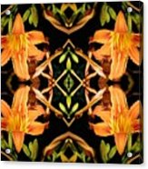 Day Lily Square Dance Acrylic Print