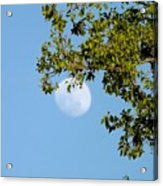 Day Moon #2 Acrylic Print