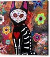 Day Of The Dead Cat El Gato Acrylic Print