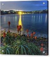 Daybreak And Cloudy Seascape And Aloe Vera Acrylic Print
