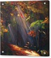Daybreak Acrylic Print by Dana Redfern