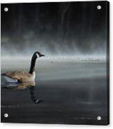 Daybreak Sentry Acrylic Print