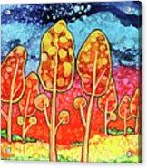 Daydream Park Acrylic Print
