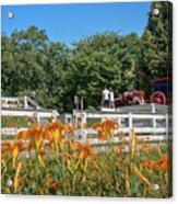 Daylilies And Oxen Wagon Acrylic Print