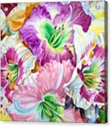 Daylilliesll Acrylic Print