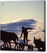 Day's End Amish Farmer Barnhill Acrylic Print