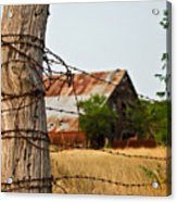 Days Gone By Acrylic Print by Lisa Moore