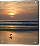 Daytona Sunrise Acrylic Print