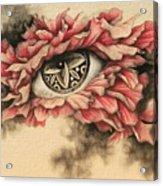 Dazzle And Blossom II Acrylic Print