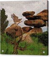 Dblad Eagle 6 Acrylic Print