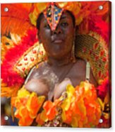 Dc Caribbean Carnival No 23 Acrylic Print by Irene Abdou